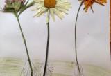 tablou cu flori presate